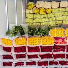 Pakowanie kwiatów zHolandii doPolski